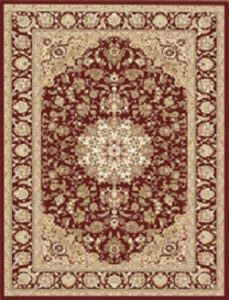 Traditional Iranian Design Red Rug